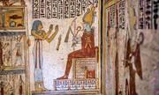کشف ۵۰ حیوان مومیاییشده در مقبره رنگین دو هزار ساله