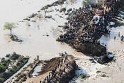 خوزستان؛ دهها هزار هکتار از اراضی کشاورزی زیر آب رفت