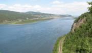 رودهای اروپا آلوده به آفتکشها و داروهای آنتیبیوتیک