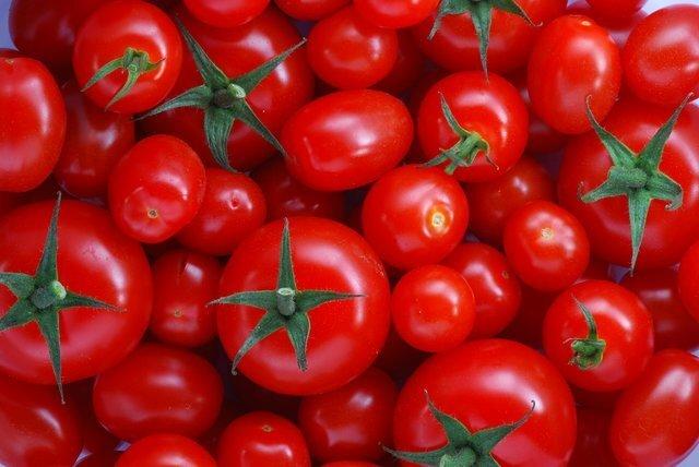 کشف تریاک در بار گوجه فرنگی!