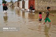 وزارت بهداشت درباره گزش مار، عقرب و سگهای ولگرد در خوزستان هشدار داد