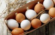 خوردن تخم مرغ در وعده صبحانه برای افراد دیابتی مفید است