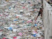 افزایش چشمگیر پسماندهای پلاستیکی در اقیانوسها از دهه ۱۹۹۰