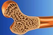 فایده مصرف پروتئین بیشتر برای سلامت استخوانها