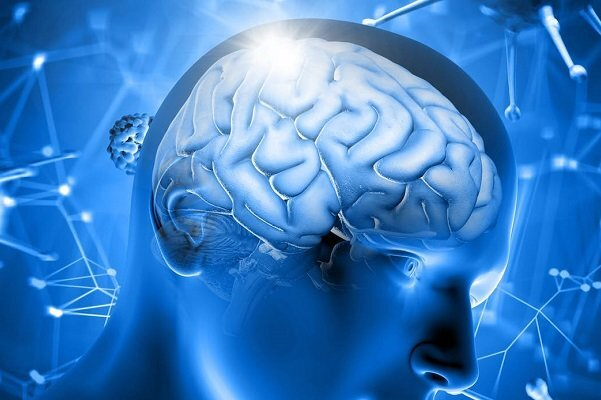 ارتباط تصميمات اخلاقي با فعاليت مغز