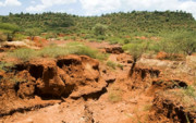 تولید یک سانتیمتر خاک، حدود ۵۰۰ سال طول میکشد