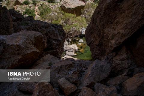در مسیر رودخانه تنگ بُراق به سمت سرچشمه حوضچه های مختلفی ایجاد شده