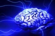 کاری که مغز افراد سالخورده را ۳۰ سال جوانتر میکند