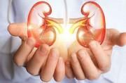 فاکتورهای پرخطر سرطان کلیه را بشناسید