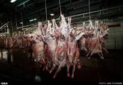 چرا گوشت ۵ دلاری ۱۰۰ هزار تومان فروخته میشود!؟