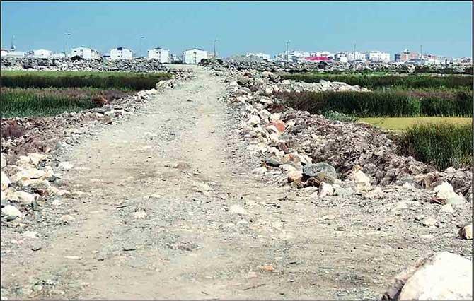 ایجاد اسکله در خلیج گرگان مجوز ندارد