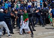 عکس روز | تظاهرکننده الجزایری