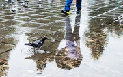 پیشبینی باران برای ۱۴ استان کشور