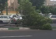پایتخت فردا ۵ خرداد ماه طوفان شدیدتری را تجربه میکند