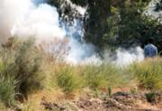 مرگ خاک با سوزاندن مزارع