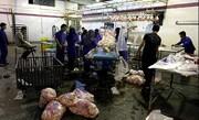 مناقشه قیمت در بازار مرغ
