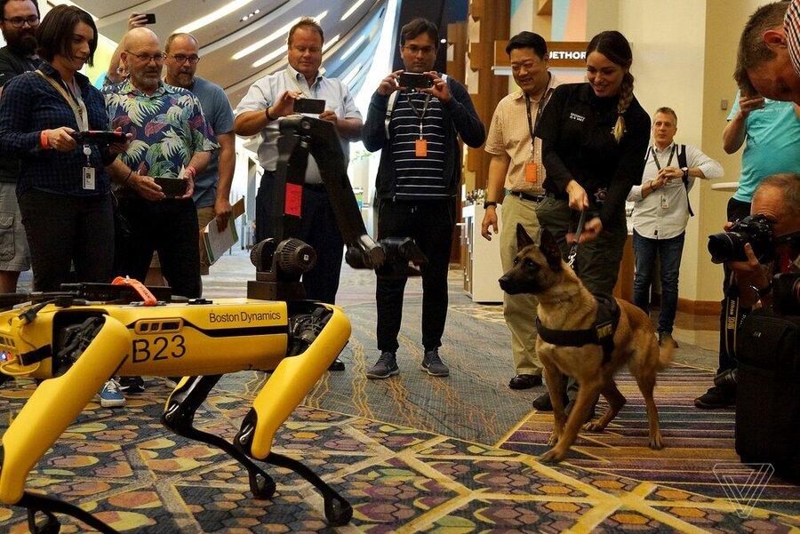 سگهای رباتیک امسال به بازار میآیند