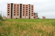 فاجعهای به نام تبدیل اراضی کشاورزی به مسکونی