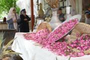 صادرات ۸ میلیون دلاری گلاب از اصفهان