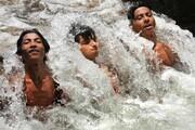 عکس روز: خنک شدن در نهر