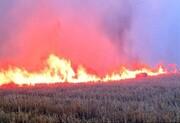 آتشسوزی در تپه باستانی هگمتانه همدان مهار شد