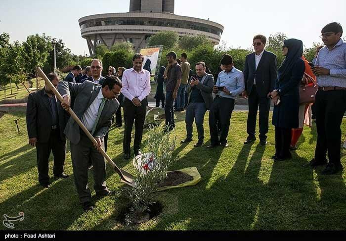 تسنیم-کاشت درخت به مناسبت تولد گاندی