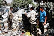 عضو شورای تهران: ۱۴ هزار زبالهگرد در پایتخت پرسه میزنند