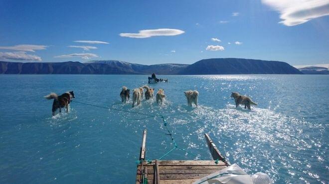 ذوب یخ در گرینلند