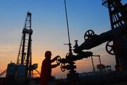 راشاتودی: قیمت نفت ۳ درصد افزایش یافت