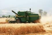 پیشنهادهای جدید برای گندمکاران آذربایجان شرقی