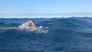 احتمال ابتلا به عفونت با ۱۰ دقیقه شنا کردن در دریا