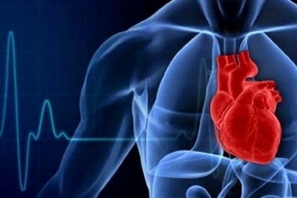 مرخصي كاري ريسك بيماريهاي قلبي را كاهش ميدهد