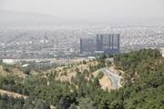 نیمی از بوستانهای جنگلی پایتختدر شرق تهران قرار دارد