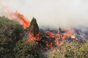 ۲ آتشسوزی در جنگلها و مراتع شهرستان بویراحمد