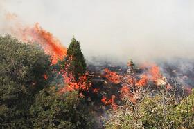 بازگشت آتش به جنگلها   عدم تامین هلیکوپتر برای اطفای حریق