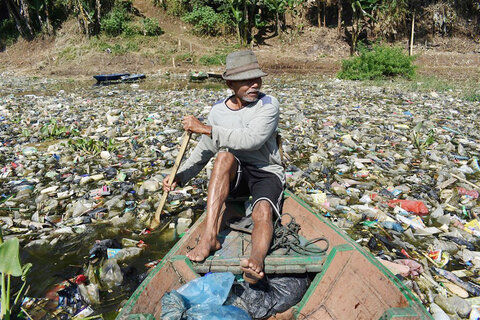 چهارسو   محیط زیست در اندونزی