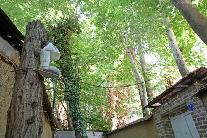 روستای اوین