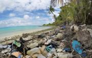 ممنوعیت تولید کیسههای پلاستیکی در نیوزیلند