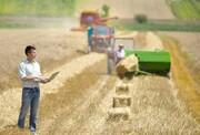 بیمهری بخش خصوصی به فارغالتحصیلان بخش کشاورزی