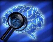 شناسایی مجرمان آینده با اثر انگشت مغزی