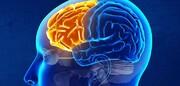 تاثیر انجام کارهای یدی در افزایش توانمندیهای مغز