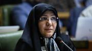شورای پنجم جلوی هوافروشی ایستاد | تهران در دی ماه هفتمین شهر آلوده جهان شد | عاقبت محیطزیست با سکانداری یک فسیلشناس