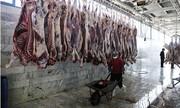 سیگنال منفی تب کریمه به بازار گوشت
