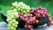 خوردن ۱۰ نوع میوهای که در تابستان توصیه میشود