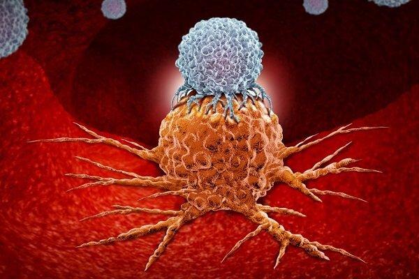 نابودي سلولهاي سرطاني با تلفيق داروهاي دو سرطان