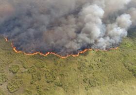 آتشسوزی در منطقه حفاظتشده مکزیک