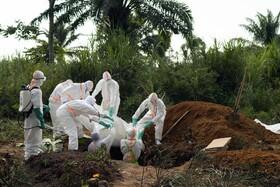 سازمان جهانی بهداشت: شیوع ابولا وضعیت اضطراری بهداشتی بینالمللی است