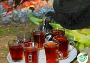 چای بخوریم یا نخوریم؟
