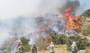 افزایش ۹۰ برابری خسارت آتشسوزی در محیط زیست استان تهران
