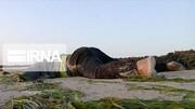 ۱۱۶ پناهجو در سواحل لیبی ناپدید شدند